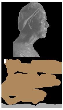 Fondazione Alimondo Ciampi Retina Logo